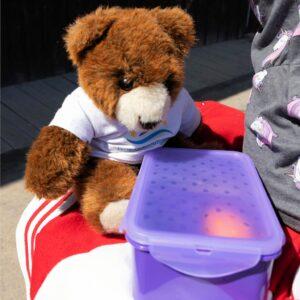 Der Urlaubär entdeckt die Lunchbox