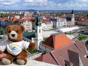 Urlaubär auf Rathausturm von Oradea
