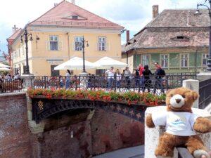 Urlaubär vor Lügenbrücke