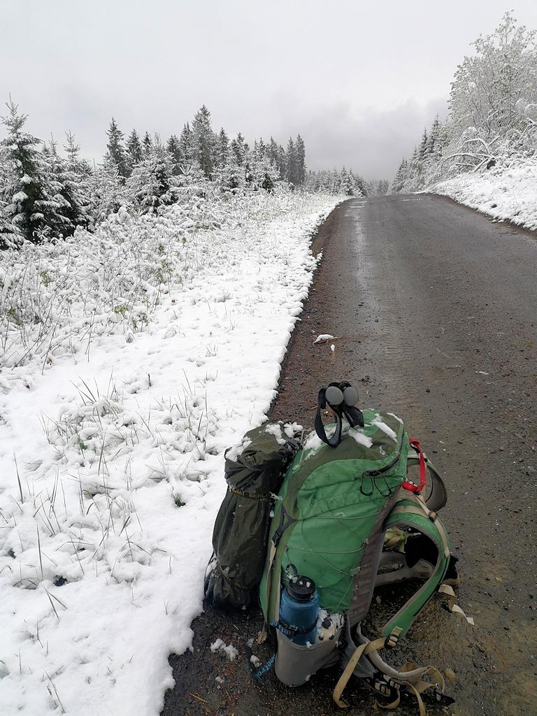 Schnee auf dem Rothaarsteig