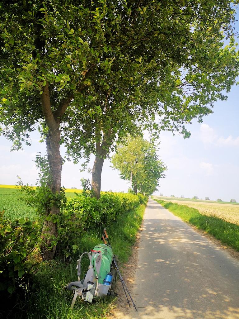 Deutschland zu Fuß - Schnurgerade Straßen durch flaches Ackerland