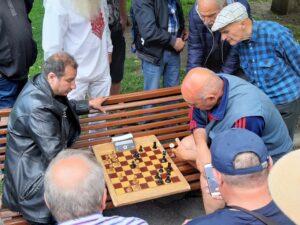 Schachspieler im Stadtgarten