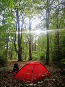 Wildzelten im Hjermind Skov