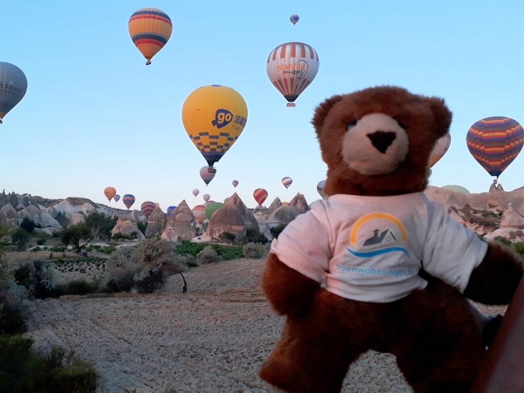Bär im Heißluftballon