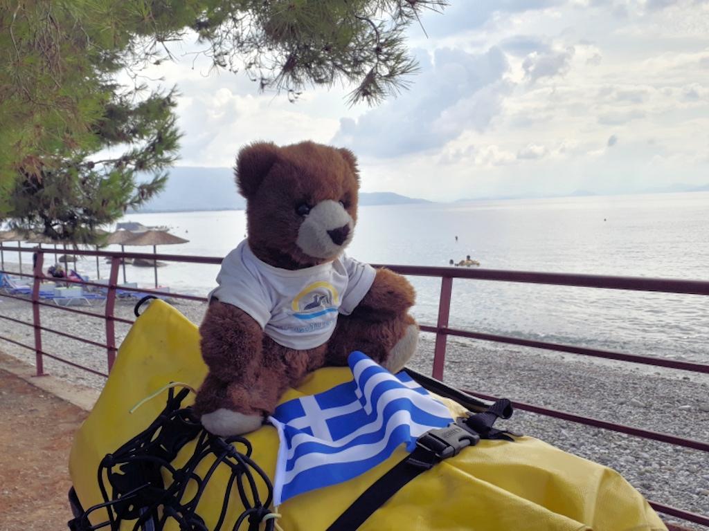 Ein müder Bär am Strand in Griechenland Nähe Korinth