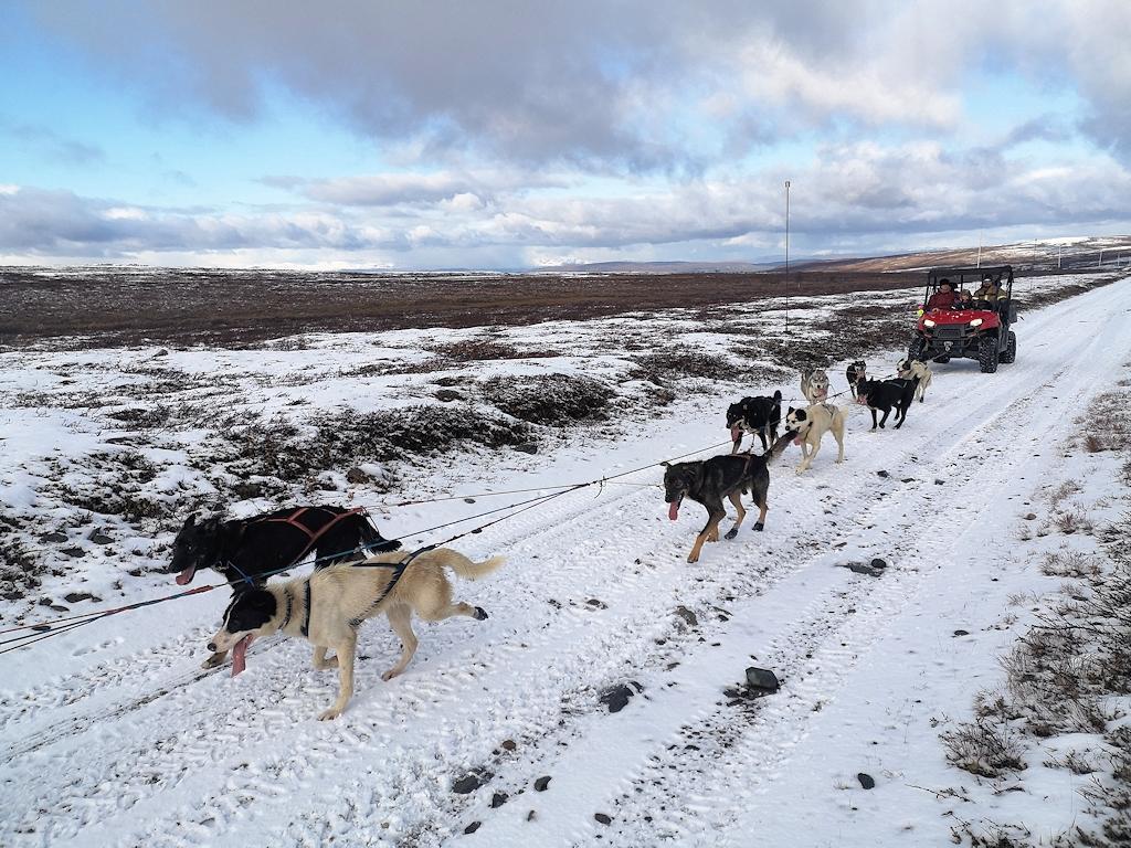Norwegen und Finnland zu Fuß - Ein Hundeschlittengespann