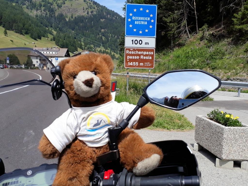 Urlaubär an Grenze zwischen Italien und Österreich am Reschenpass