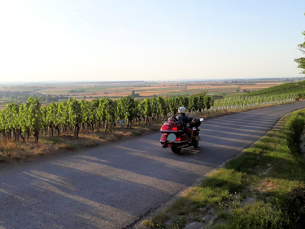 Weinland Franken