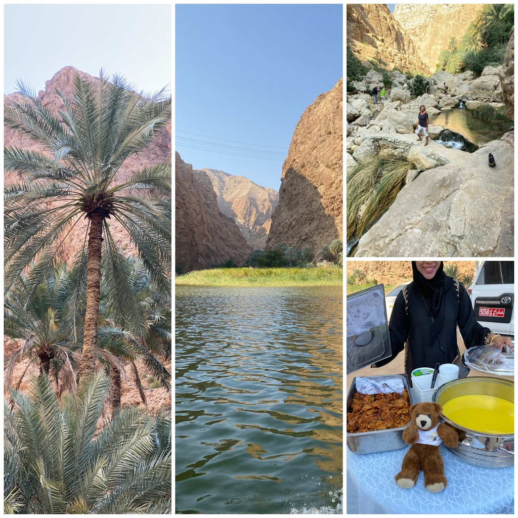 Durch den Wadi Shab