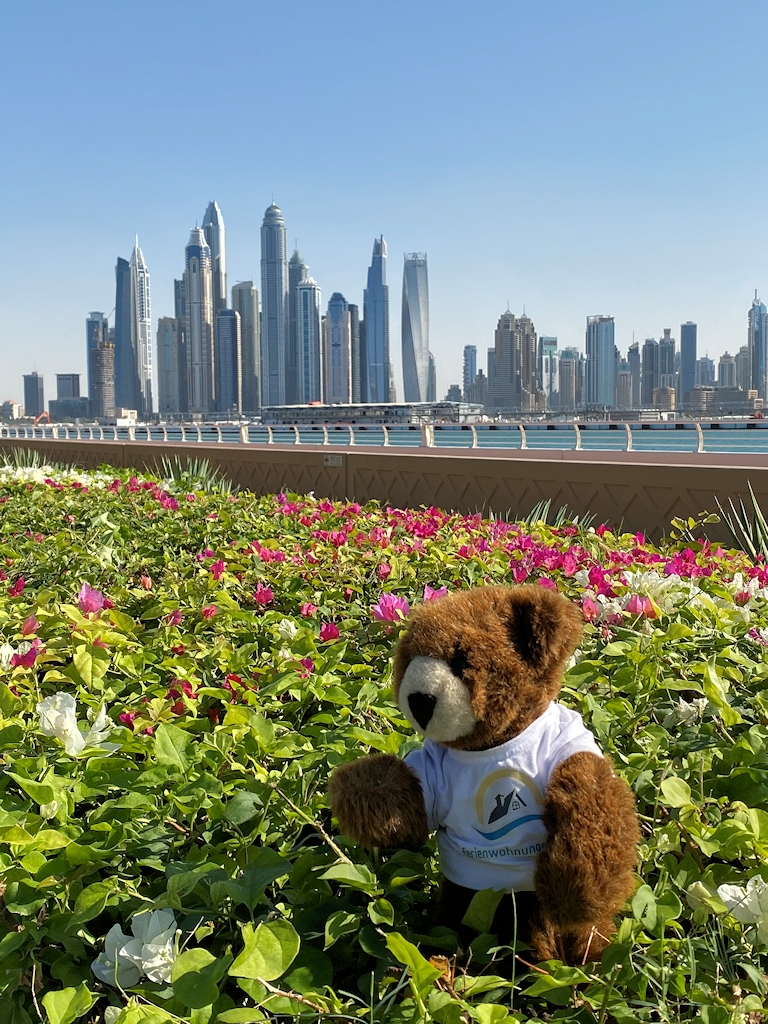 Der Urlaubär vor der Dubai Marina