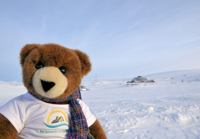 Der Urlaubär am Arctic Circle Center