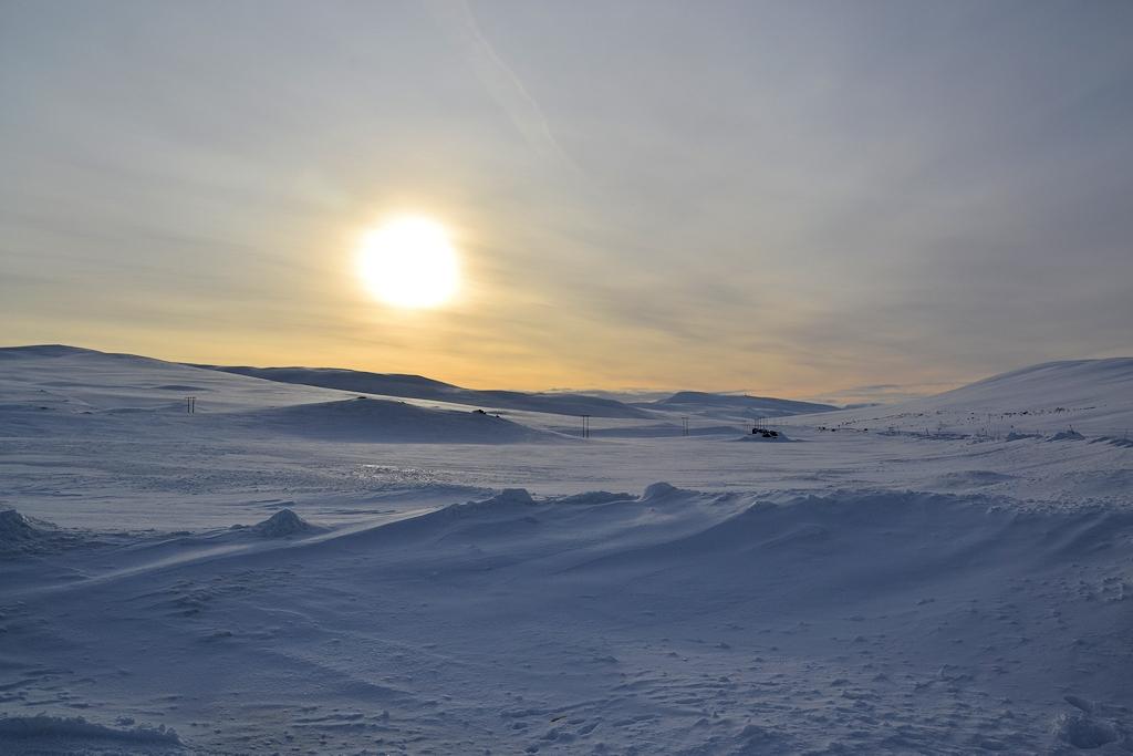 Roadtrip zum Polarkreis - Landschaft am Polarkreis in Norwegen