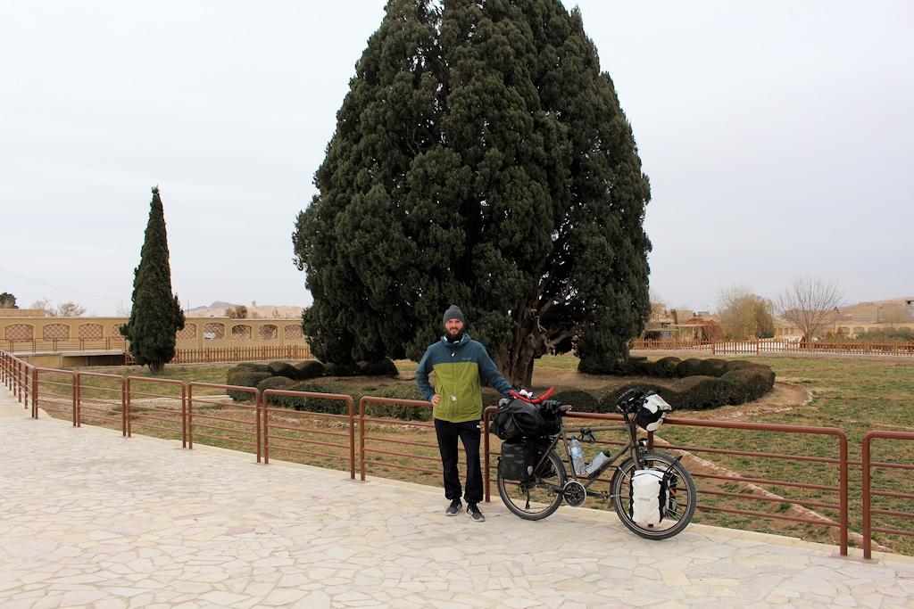 Die Zypresse von Abarqu im Iran