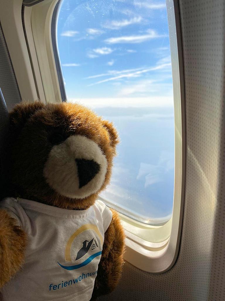 Der Urlaubär im Flugzeug nach Rhodos