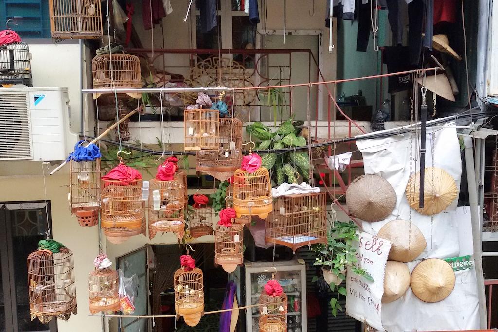 Hanoi - Vogelkäfige in der Train Street