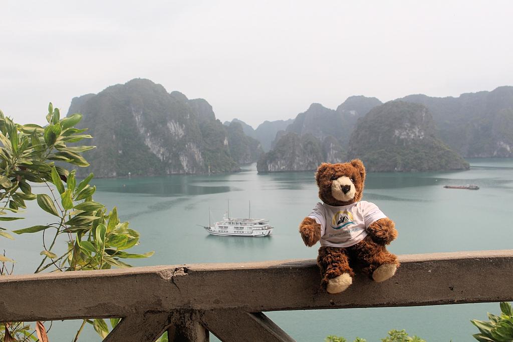 Vietnam - Der Urlaubär an der Ha Long Bucht